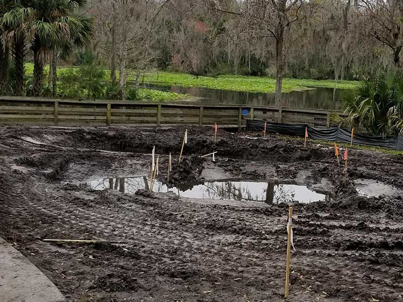 Construction of a swale and two infiltration basins to direct, retain and slow surface water run-off.