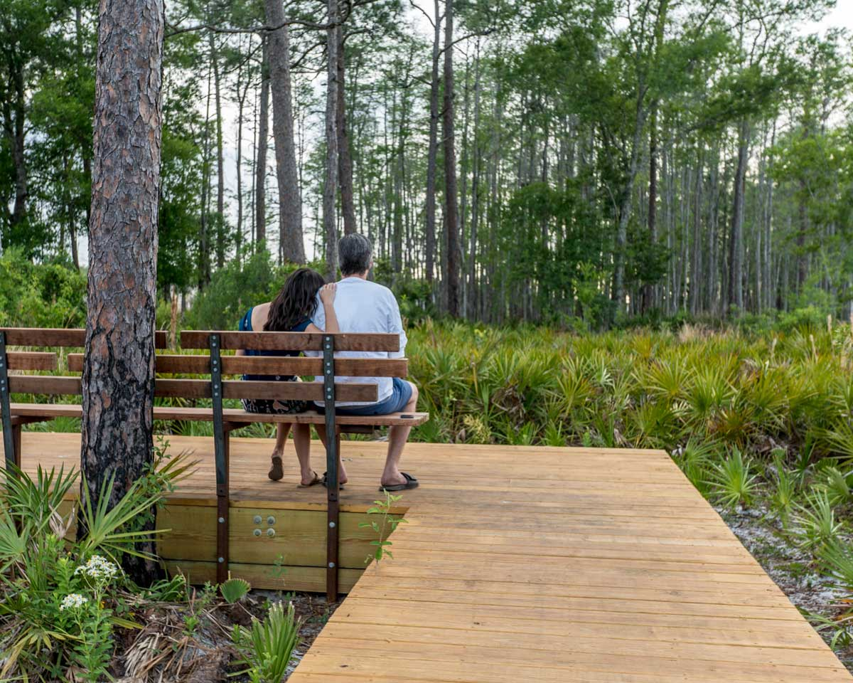 The design team preserved natural Florida plant communities—in this case, pine flatwoods—and thoughtfully located community amenities to bring people closer to nature, such as the boardwalk and bench that extend from the residential street in the background.