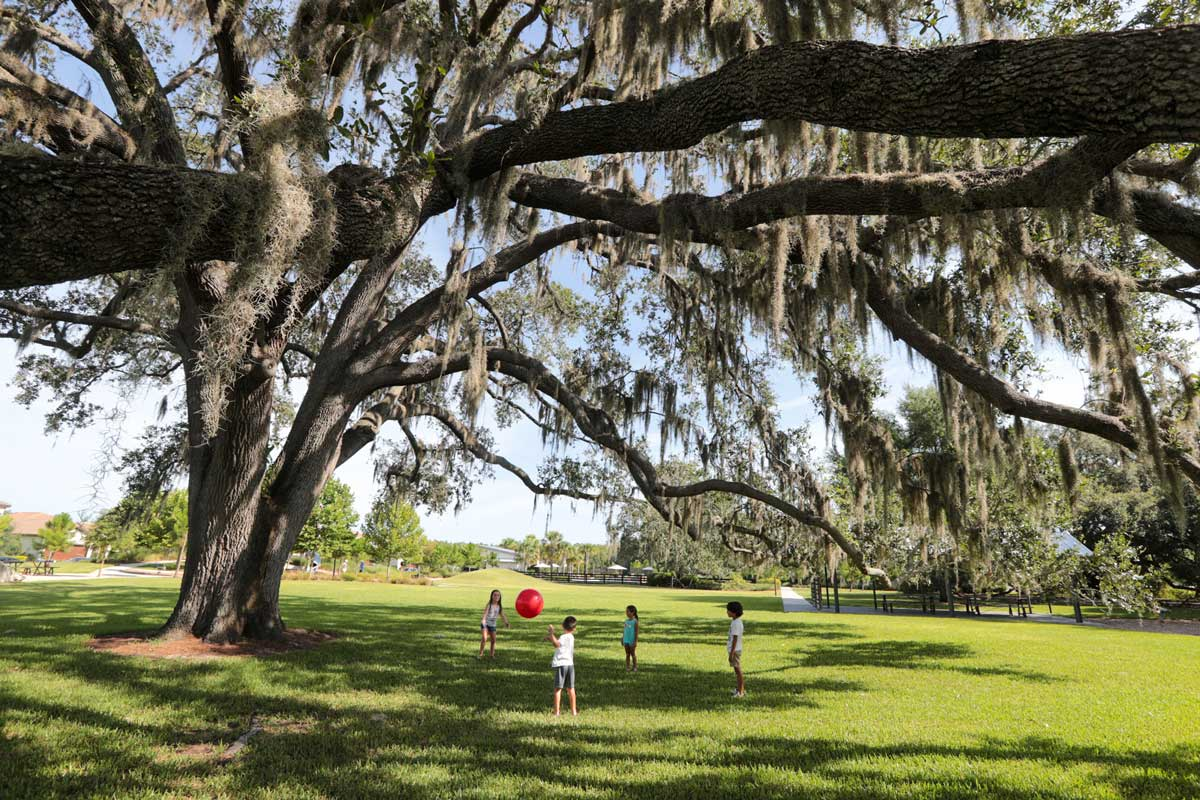 The preservation of existing trees was paramount to the community's overall sense of place. Open spaces and playgrounds situated under the shade of an oak canopy provide a unique amenity.