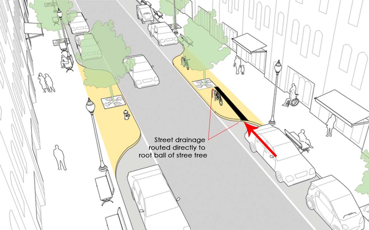 A bump-out graphic which shows the concept of water along the curb redirected and flowing to the tree well.