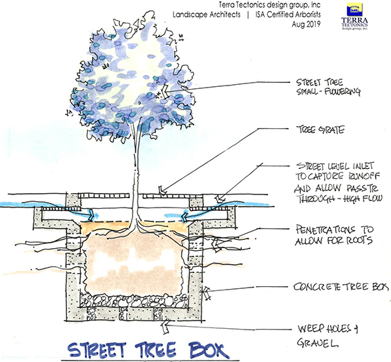 Proposed concept sketch of a self-watering tree well which uses stormwater run-off from the street to water the tree. It then overflows into a storm drain.