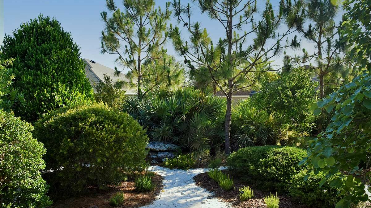 OUTSIDE Collab: Residential Native Plant Landscapes Inside a Managed Community Tour